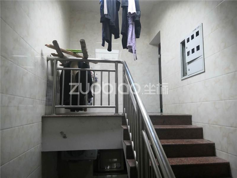 伏龙山北路 9室9厅 788